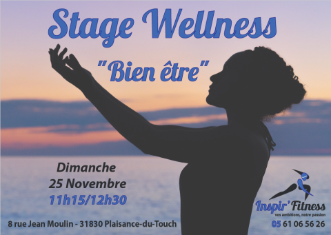Cours collectifs fitness zumba musculation cardio training stage wellness plaisance-du-touch