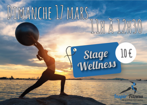 Stage Wellness Yoga Cours collectifs fitness zumba musculation cardio training plaisance-du-touch